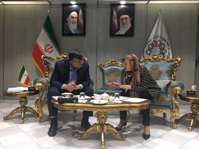 19.06.2017 Делегация ЕАЭС провела переговоры по созданию зоны свободной торговли с Ираном