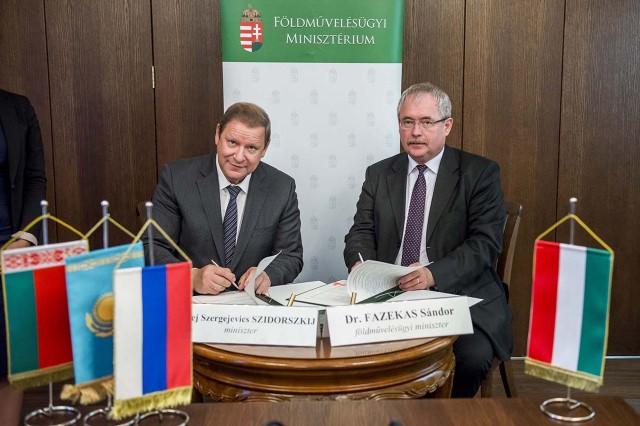 Fazekas Sándor, Szidorszkij, orosz, Georgikon, aláírás